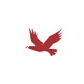 Falconwood logo
