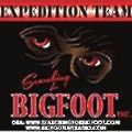 Bigfoot Project Investments logo