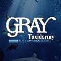 Gray Taxidermy Inc logo