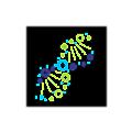 BioServe Biotechnologies logo