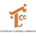 Tethyan Copper Company Pakistan logo