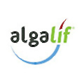 Algalif