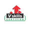 Vskills logo
