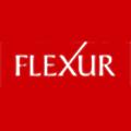 Flexur logo