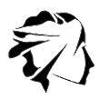 BodyCap logo
