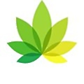 IndicaOnline logo
