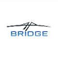 Bridge Pharmaceuticals logo