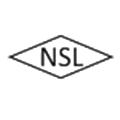 Naina Semiconductor logo