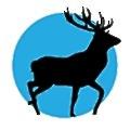 Newton Chase logo