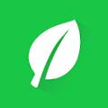 Green Invoice logo