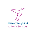 Hummingbird Bioscience logo