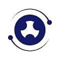 Prima Solutions logo