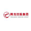 Tenglong Holding Group logo