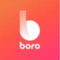 Boro logo