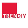 Trendiy logo