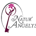 Natur'Angelys logo