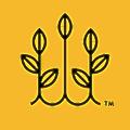 Salad Days logo