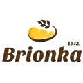 Brionka logo