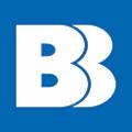 BasisBank logo