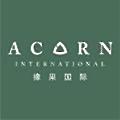 Acorn International logo