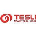 TESLI logo