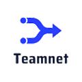 Teamnet Solutions logo