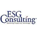 ESG Consulting logo