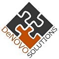 Denovo Solutions logo