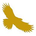 Self Management logo