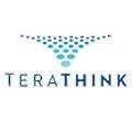 TeraThink logo