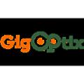 GigOptix logo