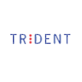 Trident Systems logo