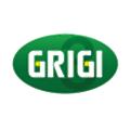 Gruppo Grigi logo