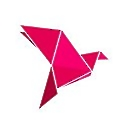 BKash logo