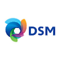 Royal DSM logo