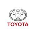 Toyota Botman logo