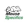 Mouse Specifics