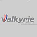 Valkyrie Enterprises logo