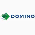 Domino Printing