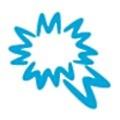 Wall Street Services Inc logo