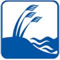 Dunes Realty logo